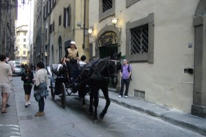 Firenze horse and cart (600 x 401)