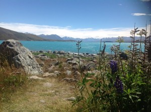 Lake Tekapo, it is actually more turquoise than this shows.