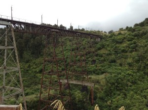 viaduct IMG_0161 (600 x 448)